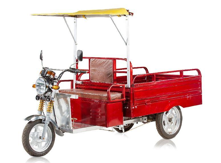Mayuri Cheeta Cargo Loading E Rickshaw Price