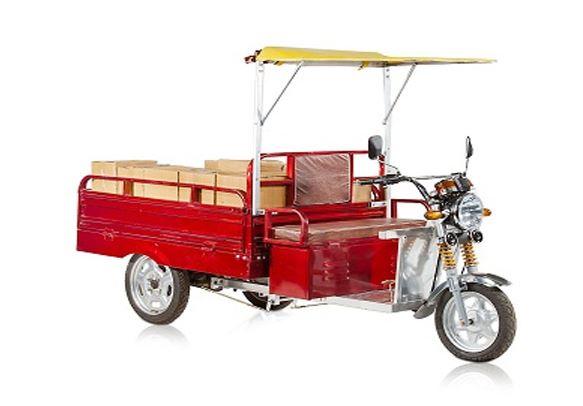 Mayuri Cheeta Cargo Loading E Rickshaw