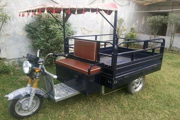 Mayuri Cheeta Grand Cargo Loading E Rickshaw